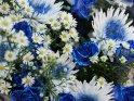 Blauweißer Blumenstrauss mit gelben Punkten