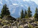 Dieses Motiv findet sich seit dem 26. Juni 2013 in der Kategorie Landschaftsfotos in den Bergen des Berner Oberlands.