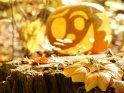Dieses Motiv findet sich seit dem 28. Oktober 2011 in der Kategorie Halloweenfotos.