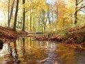 Dieses Motiv finden Sie seit dem 28. Oktober 2011 in der Kategorie Herbstlandschaften.