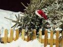 Dieses Motiv finden Sie seit dem 28. November 2012 in der Kategorie Weihnachtsbilder.