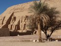 Ramses Tempel mit Palme