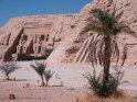 Hathor und Ramses-Tempel von Abu Simbel mit Palme