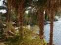 Dieses Motiv wurde am 26. August 2013 in die Kategorie Kitchener Insel (Assuan, Ägypten) eingefügt.