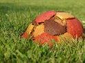Dieses Motiv befindet sich seit dem 29. Mai 2012 in der Kategorie Fußballfotos.