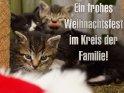 Ein frohes Weihnachtsfest im Kreis der Familie!    Dieses Kartenmotiv wurde am 15. Dezember 2012 neu in die Kategorie Weihnachtskarten aufgenommen.