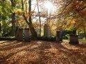 Dieses Motiv finden Sie seit dem 27. Oktober 2012 in der Kategorie Herbstlandschaften.