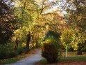Dieses Motiv befindet sich seit dem 29. Oktober 2012 in der Kategorie Herbstlandschaften.