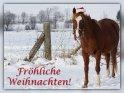 Fröhliche Weihnachten!    Dieses Motiv findet sich seit dem 18. Dezember 2013 in der Kategorie Weihnachtskarten.