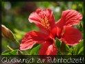 Glückwunsch zur Rubinhochzeit!    Dieses Motiv finden Sie seit dem 31. Mai 2013 in der Kategorie Rubinhochzeit (40).
