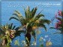 Schönen Urlaub!    Dieses Motiv befindet sich seit dem 31. Mai 2013 in der Kategorie Schönen Urlaub/ Gute Reise.