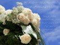 Herzlichen Glückwunsch zur Hochzeit!  Glück, Liebe, Gesundheit und Zufriedenheit für eure gemeinsame Zukunft!    Aus der Kategorie Hochzeit