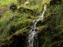 Aus der Kategorie Levada Wanderungen bei Ribeiro Frio auf Madeira