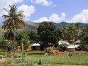 Aus der Kategorie Landschaftsbilder aus Tansania