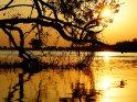 Aus der Kategorie Sonstige Motive aus Botswana