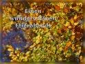 Einen wunderschönen Feierabend!    Dieses Kartenmotiv ist seit dem 31. Oktober 2013 in der Kategorie Schönen Feierabend.