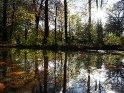 Dieses Kartenmotiv ist seit dem 30. Oktober 2013 in der Kategorie Herbstlandschaften.