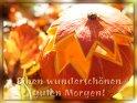 Einen wunderschönen guten Morgen!    Dieses Motiv findet sich seit dem 31. Oktober 2013 in der Kategorie Guten Morgen.