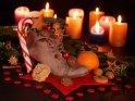 Dieses Motiv findet sich seit dem 03. Dezember 2013 in der Kategorie Bilder zum Nikolaustag.