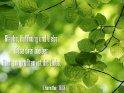 Glaube, Hoffnung und Liebe,  diese drei bleiben.  Aber am größten ist die Liebe.  1.Korinther 13,13