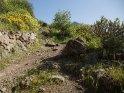 Dieses Motiv ist am 21.06.2017 neu in die Kategorie In den Bergen von Gran Canaria aufgenommen worden.
