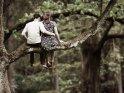 Pärchen sitzt auf dem Ast eines Baumes