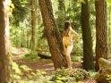 Aktfoto von einer im Wald stehenden Frau