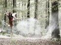 Teufelsfee springt im vernebelten Wald in die Luft.