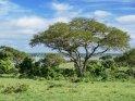 Aus der Kategorie Landschaftsbilder aus Uganda