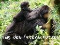 Wir sind vom Aussterben bedroht!  Tag des Artenschutzes  (3. März)  Insgesamt gibt es (Stand 2015) weniger als 1000 Berggorillas.