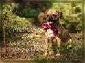 Alles Gute zum Geburtstag, Dickerchen!    Aus der Kategorie Geburtstagskarten für Tierfreunde