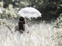 Eine junge Frau im weißen Hochzeitskleid steht mit einem Sonnenschirm auf einer Wiese.