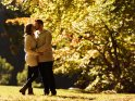 Küssendes Paar im herbstlichen Park