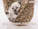 Ganz besonders liebe Grüße zum Weltknuddeltag!  (21. Januar)