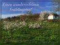 Einen wunderschönen Frühlingstag!    Dieses Motiv wurde am 28. April 2016 in die Kategorie Frühlingskarten eingefügt.