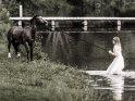 Eine Frau im Brautkleid versucht mit einem Pony in einen See zu gehen.
