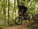Downhill-Mountainbiker fährt durch den Wald