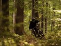 Downhill-Mountainbiker fährt mit seinem Fahrrad durch eine Kurve im Wald