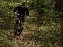 Downhill-Mountainbiker auf einem Trail im Wald