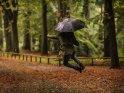 Mann mit Regenschirm springt im herbstliche Park in die Luft