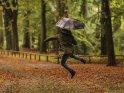 Mann mit Regenschirm macht Luftsprünge im verregneten Park