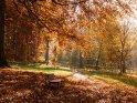 Herbstlicher Weg mit einer Bank    Dieses Motiv ist am 29.09.2016 neu in die Kategorie Herbstlandschaften aufgenommen worden.