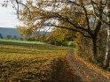 Spätherbst im südlichen Niedersachsen