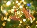 Dieses Motiv ist am 08.12.2016 neu in die Kategorie Weihnachtsbilder aufgenommen worden.
