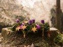 Adventskranz im Park mit einer brennenden Kerze zum 1. Advent    Dieses Motiv ist am 07.12.2017 neu in die Kategorie Adventskränze aufgenommen worden.