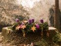 Adventskranz im Park mit zwei brennenden Kerzen zum 2. Advent    Dieses Kartenmotiv wurde am 30. November 2017 neu in die Kategorie Adventskränze aufgenommen.