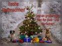 Frohe Weihnachten!  Und ein großartiges Fest für Zwei- und Vierbeiner!    Dieses Kartenmotiv wurde am 16. Dezember 2016 neu in die Kategorie Weihnachtskarten aufgenommen.