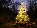 Dieses Motiv wurde am 20. Dezember 2016 in die Kategorie Weihnachtsbäume eingefügt.