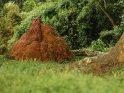 Dieses Motiv finden Sie seit dem 26. September 2017 in der Kategorie Sonstige Fotos aus Uganda.