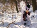 Schneemann wirft einen Schneeball